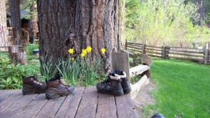 Damsel Boots from Metolius Trip