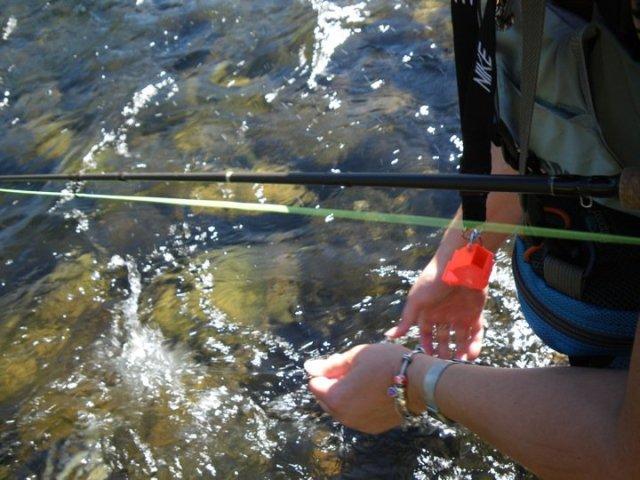 fly fishing8
