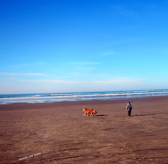 bubba beach2