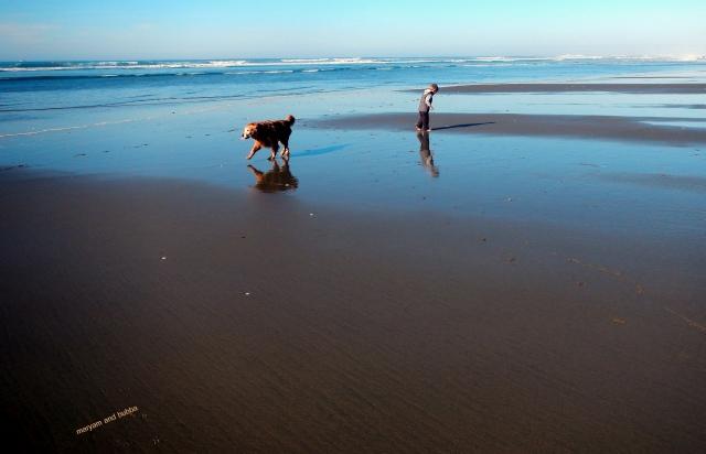 bubba beach4