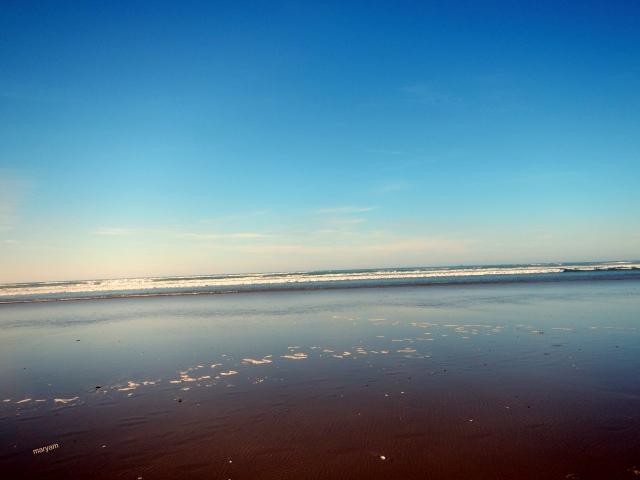 bubba beach6